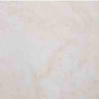 "24"" x 24"" Porcelain Tile (1059)"