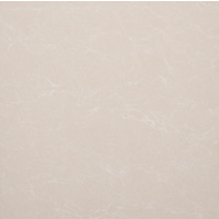 "24"" x 24"" Porcelain Tile (80602)"